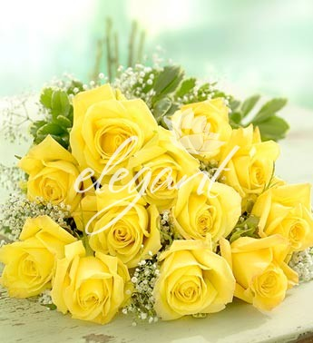yellow-roses